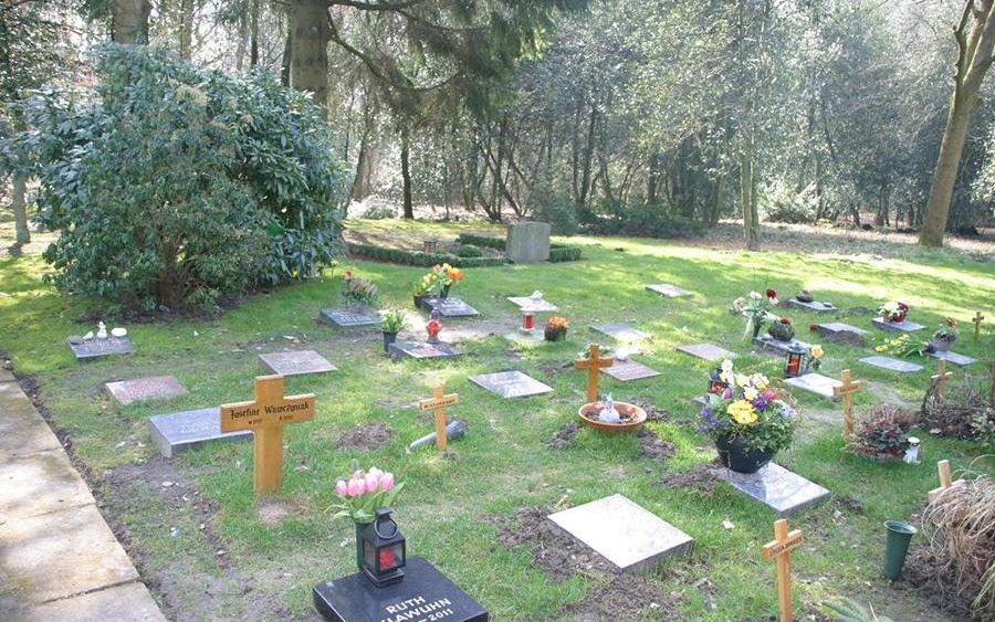 Bestattungen Bochum Pflegefreies Reihengrab