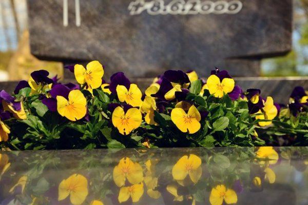 Blumensprache: Welche Blumen für die Beerdigung?